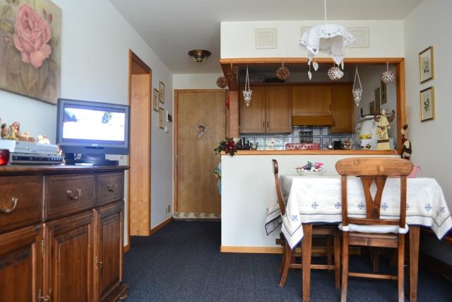 Appartamento mini  ( 1 camera + divano letto – 4 posti letto)